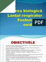 Lantul Respirator