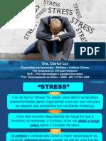 3.0. Stress,Fadiga Adrenal e Sindrome de Bournout (Este)