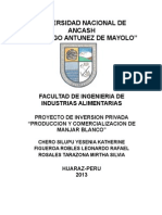 PROYECTO DE INVERSION- INDUSTRIAS LACTEAS 2012-II..docx