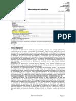 Fiorentini_Miocardiopatia_cirrotica_v16_01_09.doc