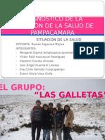 situacion_de_la_salud_pampacamara[1].pptx