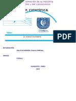 informe de sammir.docx