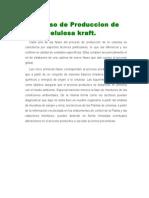 Proceso de Produccion de Celulosa Kraft
