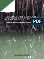 LIVRO PROAMB-RECUPETRO_Baía de Todos os Santos, Bahia.pdf