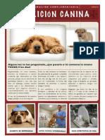 Complemento gratuito - nutrición canina