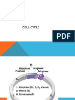 cell cycle proper lecture.pptx