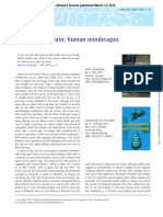 Brain-2012-Malafouris-brain_aws063.pdf