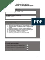 Agent de securitate.pdf