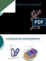 DNA e RNA