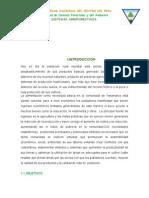 CARACTERIZACION-YANAMARCA.docx