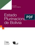 Bolivia y Pueblos Indigenas 2012