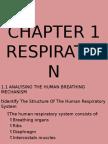 2013 - Respiration