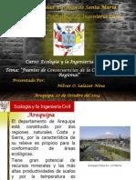 Ecologia y La Ingenieria Civil en la sociedad