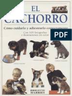 Perros  - El Cachorro guia completa