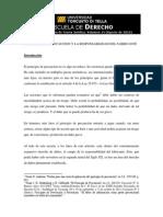 El principio de precaucion.pdf