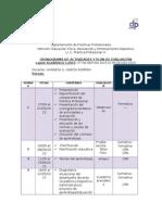 Crononograma y Plan de Evluación Práctica Profesional III