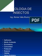Ecologia de Insectos-clases