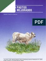 Fertilizacion de Pastos