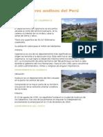Lugares andinos del Perú.docx