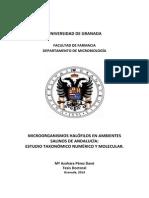 Estudio taxonomico molecular.pdf