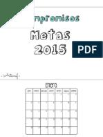 Organizador 2015