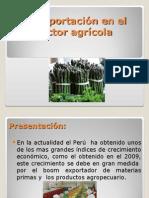 La Exportación en El Sector Agrícola