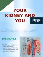 Kidney Disease Community Health Presentation