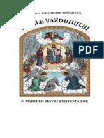 nicodim-mandita-vamile-vazduhului-si-marturii-despre-existenta-lor.pdf