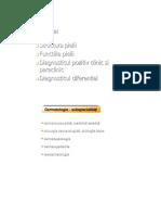 Curs 2 - Anatomia Pielii
