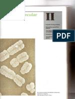 P2-C05 - Funciones de las proteínas