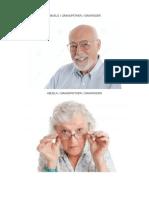 La Familia en Ingles / Español