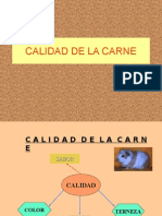 Clase 5B(Calidasd)