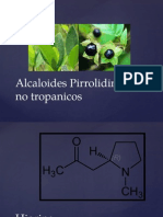 Alcaloides Pirrolidinicos