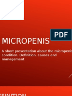 About the Micropenis Condition