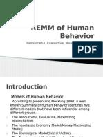 REMM Financial Behavior
