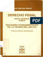 Garrido Montt, Mario - Derecho Penal. Tomo II