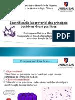Aula 6- identificau00E7u00E3o de bacterias gram  positivas.pdf