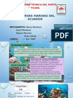 Reserva Marina de Galapagos (Areas Naturales)