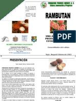 20febtriptico Rambutan 3