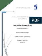 manual de metosoas numericos