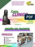 Caso Clinico Linfoma LISTO