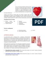 Epidemiologia de Enfermedades del aparato Cardiovascular