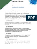 Ensayo- Elementos Principales de Los Proyectos de Inversion
