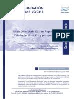 shale gas en argentina.pdf