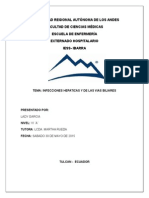 INFECCIONES-HEPATICAS-Y-BILIARES.docx