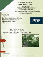 blasamina