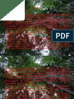 Presentación1-CARO-LEGISLACION.pptx