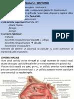 Lp9 - Respirator