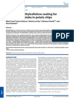 Plasticized Methylcellulose Coating for Reducing Oil Uptake