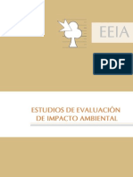 Instructivo General - Revisión de EEIAs